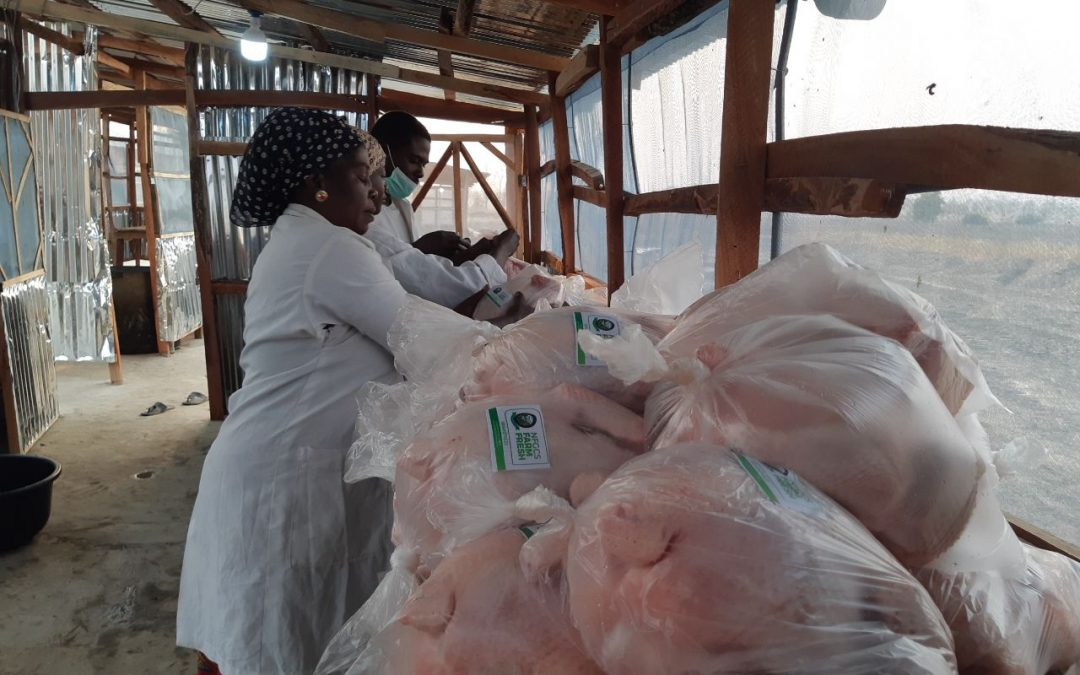 Frozen Foods: NFGCS Pilot Poultry Program a Success